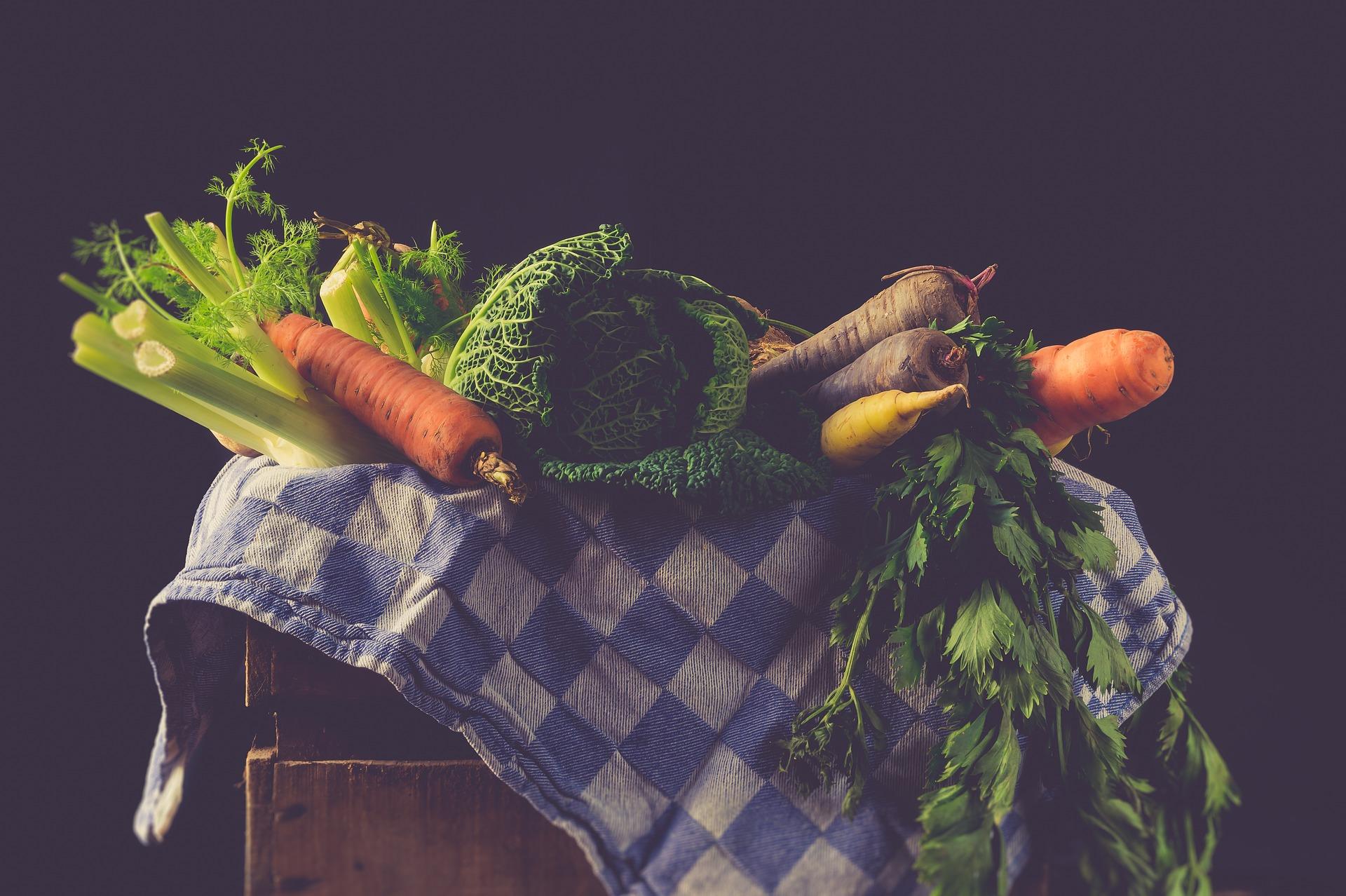 1月なのに!夏野菜の種をまきました。