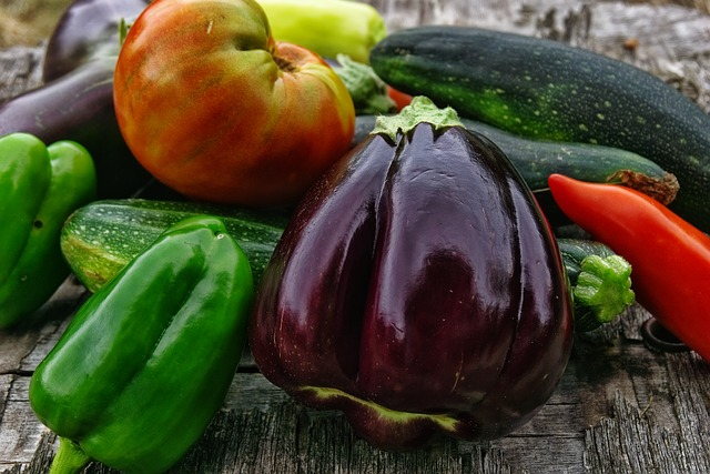 2月2日に蒔いた夏野菜の種が発芽してきました。