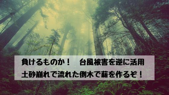 負けるものか!台風被害を逆に利用。倒木で薪を作るぞ!