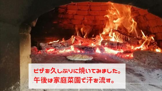 久しぶりに石窯でピザを焼きました。午後は家庭菜園で汗を流す。