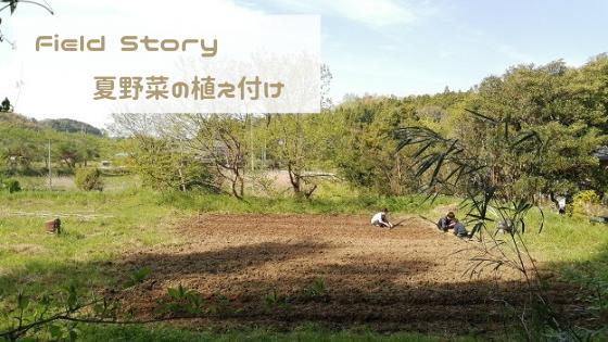 Field Story 夏野菜の植え付け