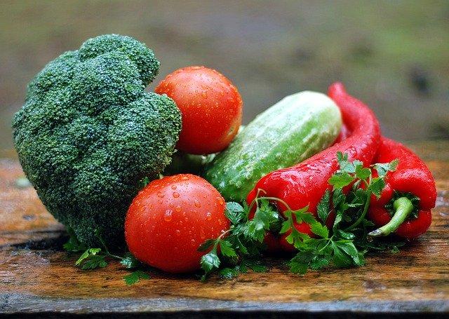 夏野菜の苗の状況と種まき。その後・・・。