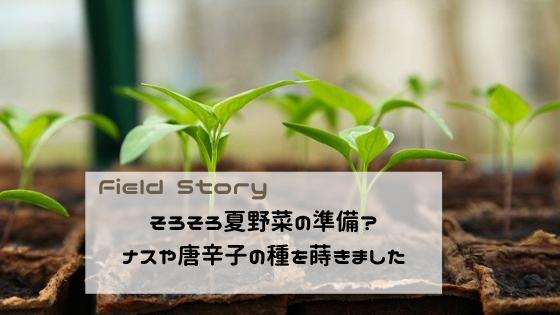 Field Story そろそろ夏野菜の準備?ナスや唐辛子の種を蒔きました