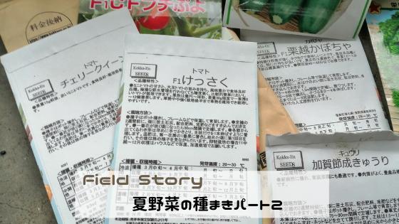 Field Story 夏野菜の種まきパート2
