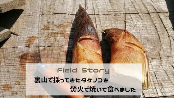 裏山で採ってきたタケノコを焚火で焼いて食べました